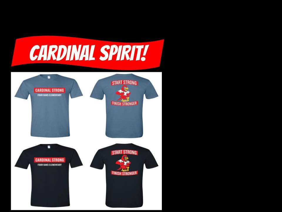 images of the spirit wear shirt options