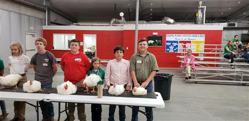 Coastal Plains Chicken FFA Project