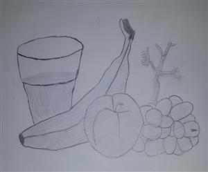 Pencil Sketch of Fruit
